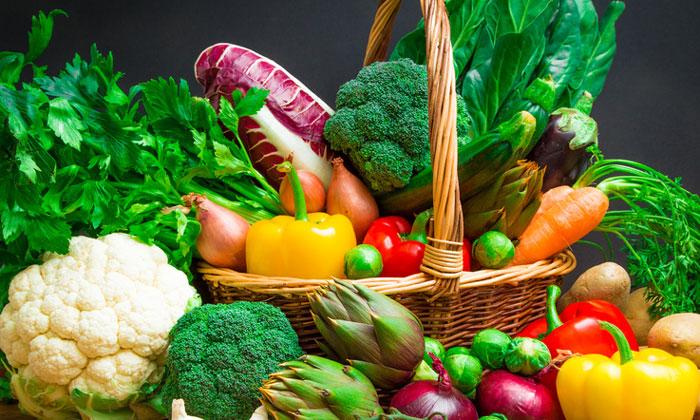 verduras_invierno_-t