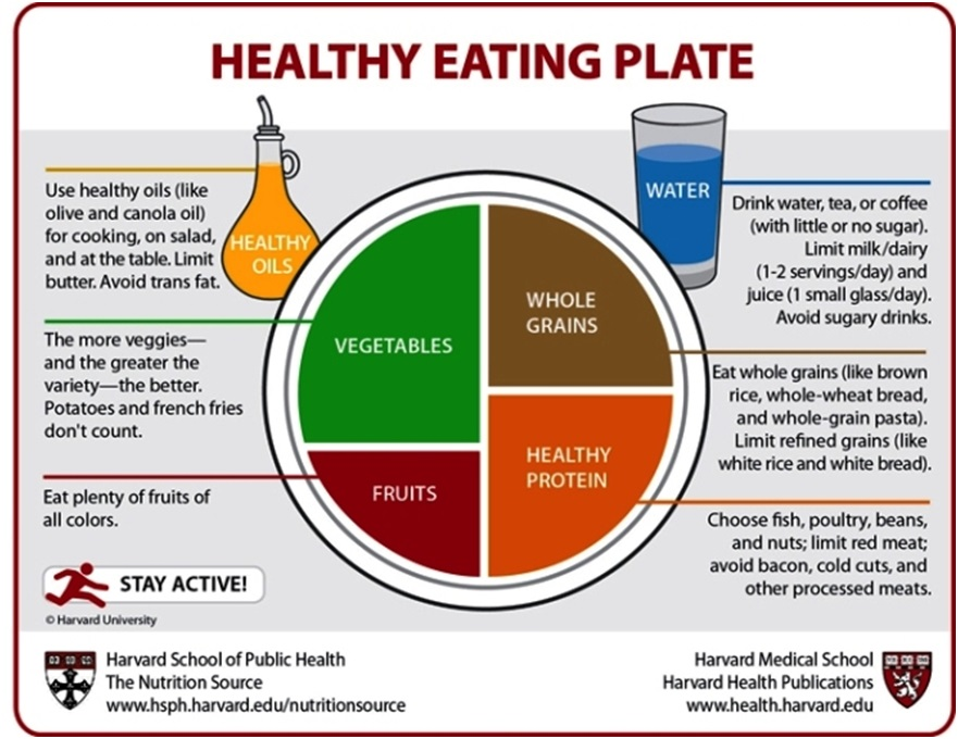 healthy-eating-plate2